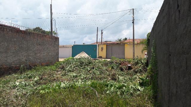 Litoral Norte - Barra de Santo Antônio - Ilha da Croa - Em Rua Pavimentada - Foto 10