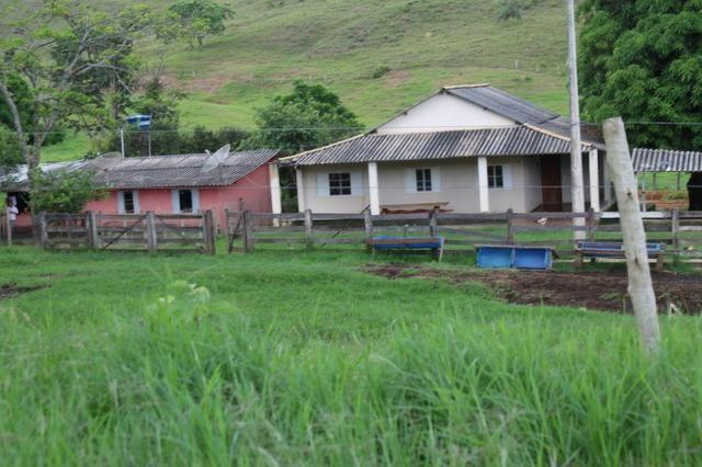 """Fazenda Montada 25 Alqueires Cocalzinho""""Toda Formada,72 km de Anapolis,129 km Goiania - Foto 9"""