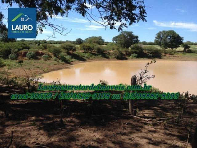Fazenda com 9.800 hectares em Montalvânia MG - Foto 14