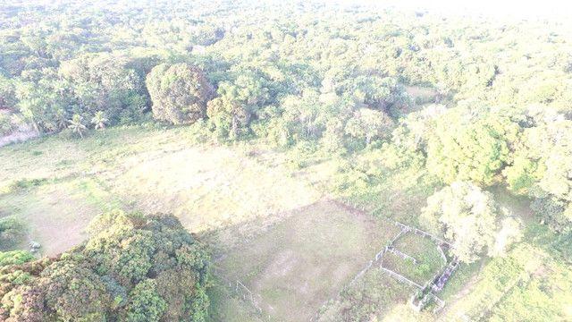 R$350 mil reais 17 hectares em Castanhal -Pa com casa boa de alvenaria - Foto 2