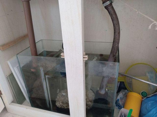 Aquário de 240 litros com móvel