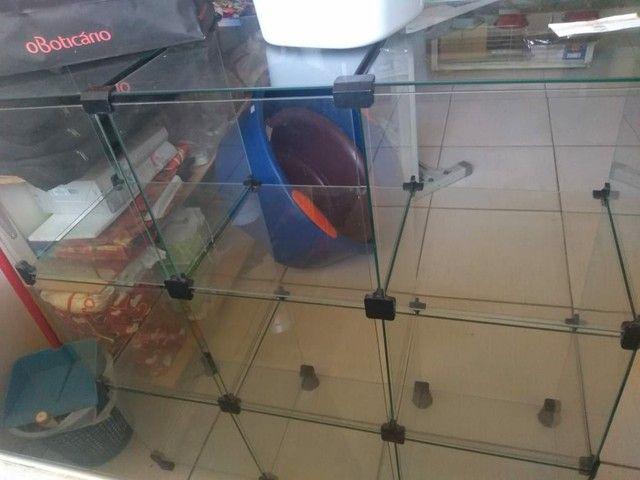 Vendo estante de vidro - Foto 3