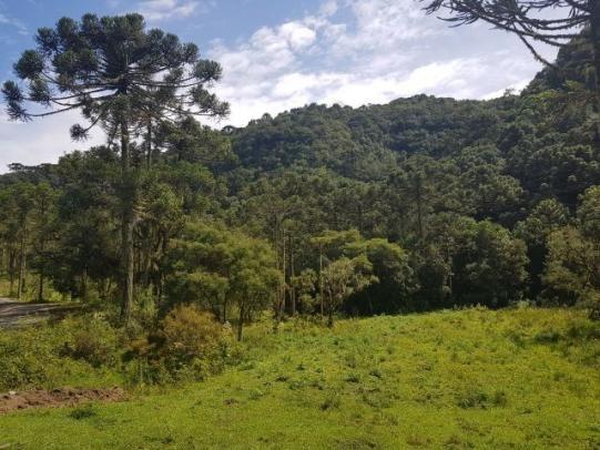 Sitio com 3,2 hectares em Urubici