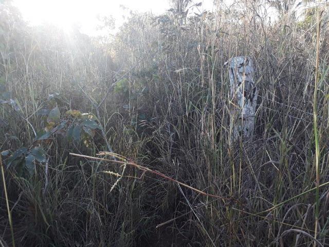 Chácara com 38.2 Hect em Acorizal - Foto 14