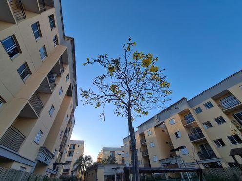 Apartamento para alugar no bairro Jardim Planalto - São José do Rio Preto/SP - Foto 8