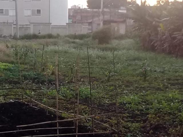 Chácara para alugar, Vila Urupês, Suzano - Foto 6