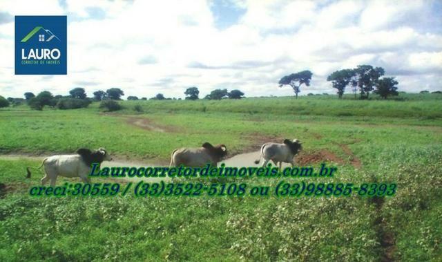 Fazenda com 9.800 hectares em Montalvânia MG - Foto 7