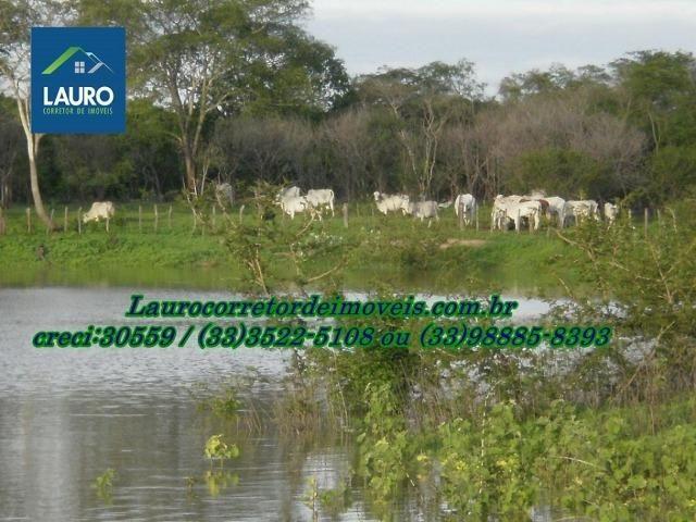 Fazenda com 9.800 hectares em Montalvânia MG - Foto 4