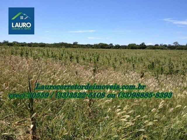 Fazenda com 9.800 hectares em Montalvânia MG - Foto 16