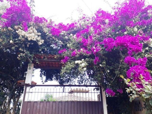 Casa - Macacos - Cód: 324 - Foto 19