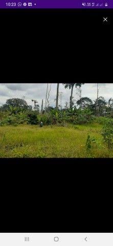 Vendo esta terreno 10 por 25 na floresta