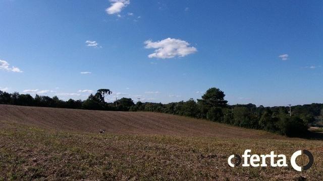 Chácara em Contenda Urbana - (100 mil + 50 parcelas de 2.000,00) / Camionete - Foto 4