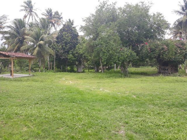 Oportunidade de Chácara, com 5,2 ha, há margem da RN 316, em Monte Alegre/RN - Foto 14