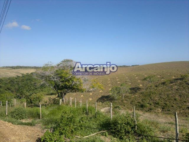 Excelente Fazenda em Ipioca - Ipioca - Um Paraíso Auto Sustentável - Foto 8