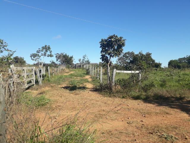 Fazenda com 784,77 hectares entre Jangada e Rosário Oeste - Foto 11