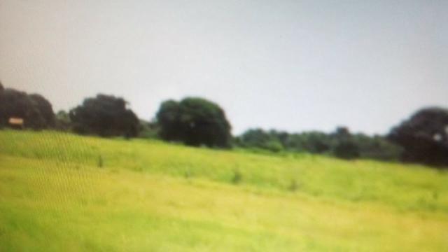 Fazenda de 87.945 hectares, em pocone no pantanal Mato-Grossense ! - Foto 5