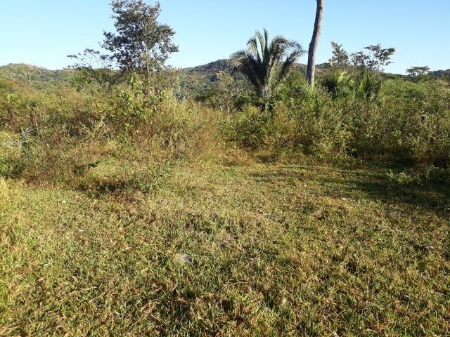 Fazenda 866 Hectares apos 35 km da Agrovila das Palmeiras - Foto 19