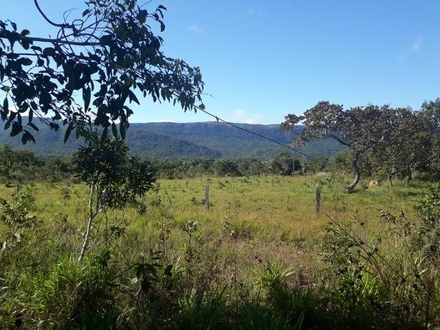 Fazenda com 784,77 hectares entre Jangada e Rosário Oeste - Foto 15