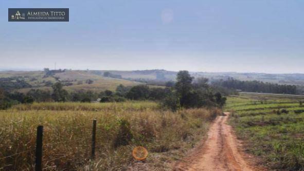 Maravilhosa Fazenda à Venda em Limeira/SP ? 45 alqueires ? À 150 km de São Paulo ? Confira - Foto 5