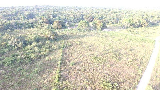 R$350 mil reais 17 hectares em Castanhal -Pa com casa boa de alvenaria - Foto 8