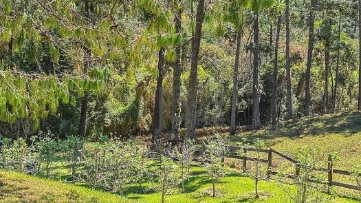 Maravilhoso rancho de 90 hectares - Foto 14