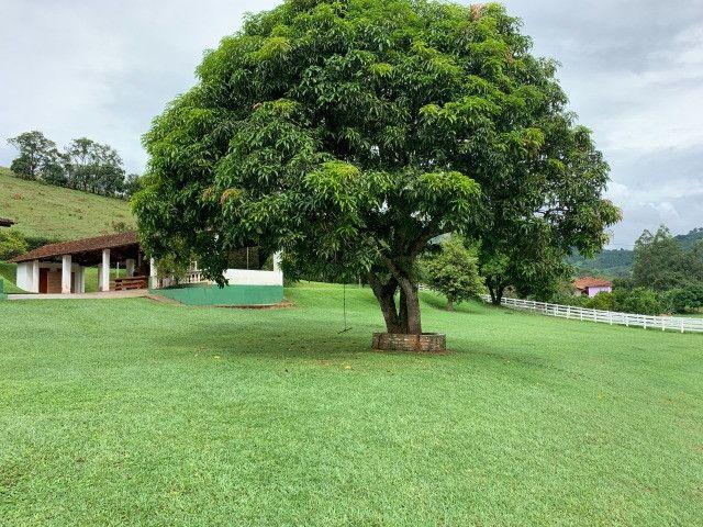 Maravilhoso Sítio de 11 hectares, em São José do Alegre-Mg - Foto 17
