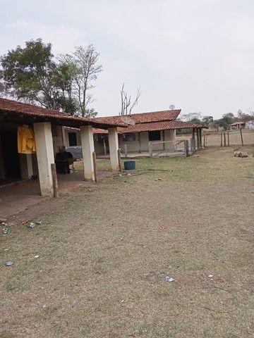 Chácara 20mil m2, 2 Casas Simples, 2 Dormitórios, Pasto, Lago com Peixes, Chiqueiro, Ranch - Foto 10