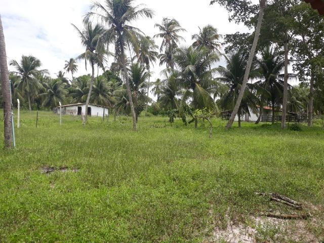 Oportunidade de Chácara, com 5,2 ha, há margem da RN 316, em Monte Alegre/RN - Foto 9