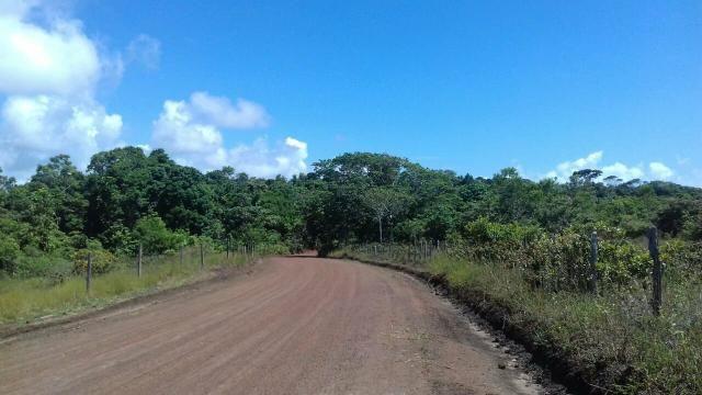 Área rodovia Ilhéus -Itacaré - Foto 7