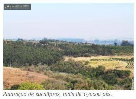Maravilhosa Fazenda à Venda em Limeira/SP ? 45 alqueires ? À 150 km de São Paulo ? Confira - Foto 12