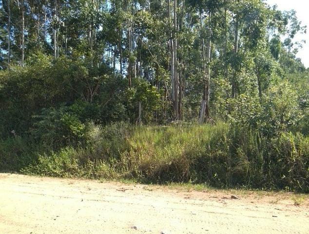 Chácara na localidade de Paquete - Capela de Santana - Foto 2