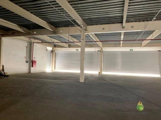Loja para alugar, 570 m² por R$ 65.000/mês - Graça - Salvador/BA - Foto 3