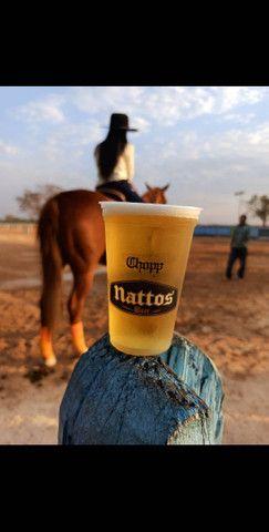 CHOPP NATTOS BEER  o Melhor chopp de Goiás  - Foto 2