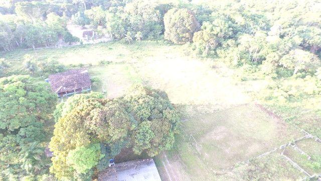 R$350 mil reais 17 hectares em Castanhal -Pa com casa boa de alvenaria - Foto 4