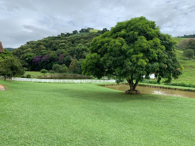 Maravilhoso Sítio de 11 hectares, em São José do Alegre-Mg - Foto 16