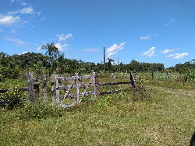 R$350 mil reais 17 hectares em Castanhal -Pa com casa boa de alvenaria - Foto 11