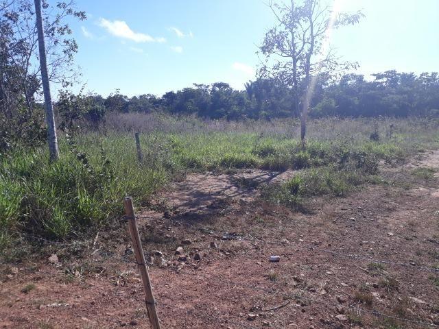 Fazenda com 784,77 hectares entre Jangada e Rosário Oeste - Foto 18