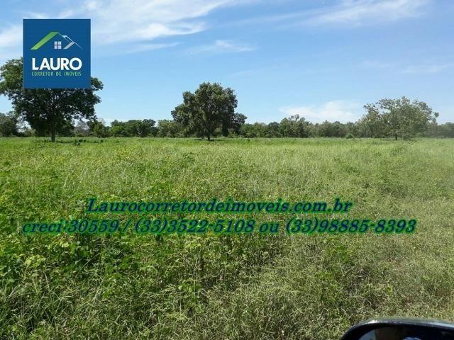 Fazenda com 9.800 hectares em Montalvânia MG - Foto 18
