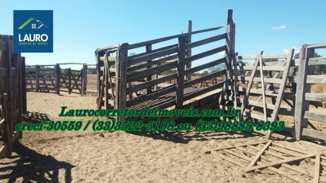 Fazenda com 9.800 hectares em Montalvânia MG - Foto 11