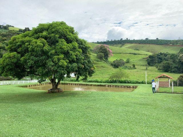 Maravilhoso Sítio de 11 hectares, em São José do Alegre-Mg - Foto 15