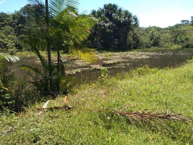 R$350 mil reais 17 hectares em Castanhal -Pa com casa boa de alvenaria - Foto 12