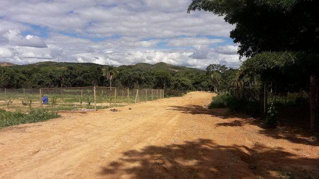 Chácara 20 reais metro  - Foto 5