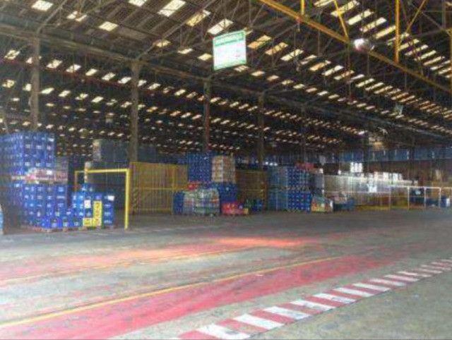 Galpão logístico à venda às margens da BR 153 GO - Foto 19