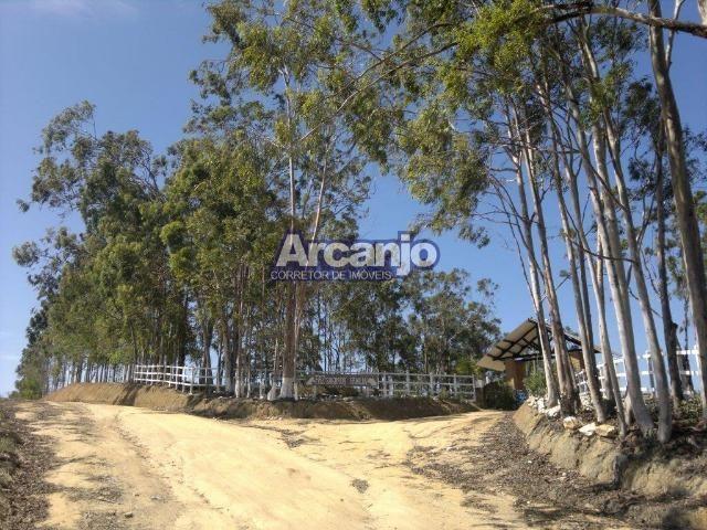 Excelente Fazenda em Ipioca - Ipioca - Um Paraíso Auto Sustentável - Foto 19
