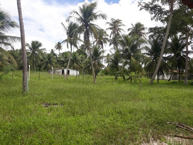 Oportunidade de Chácara, com 5,2 ha, há margem da RN 316, em Monte Alegre/RN - Foto 8