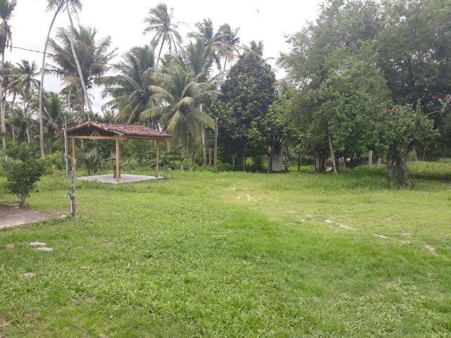 Oportunidade de Chácara, com 5,2 ha, há margem da RN 316, em Monte Alegre/RN - Foto 16