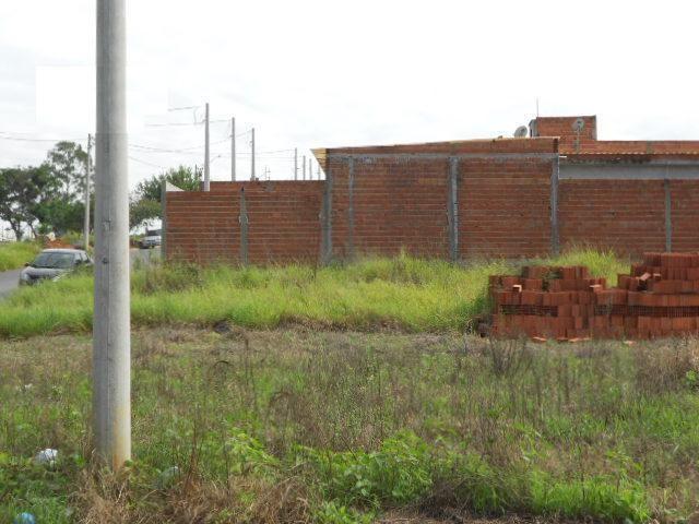 Terreno à venda, , jardim boer i - americana/sp - Foto 2