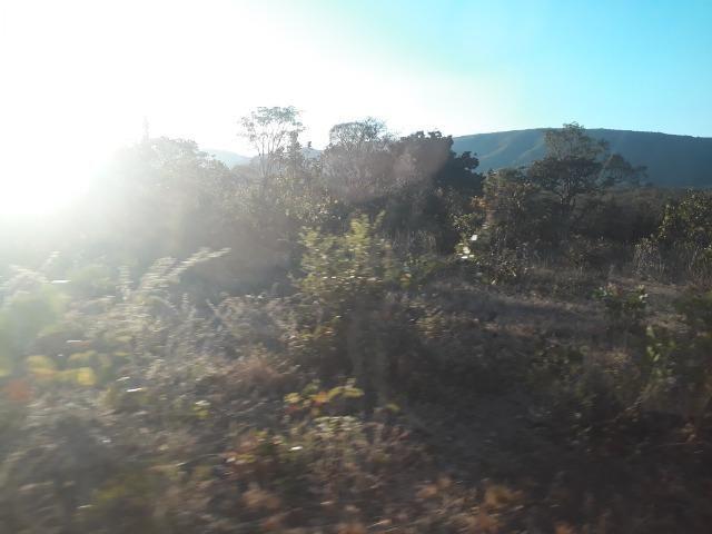 Fazenda 866 Hectares apos 35 km da Agrovila das Palmeiras - Foto 2