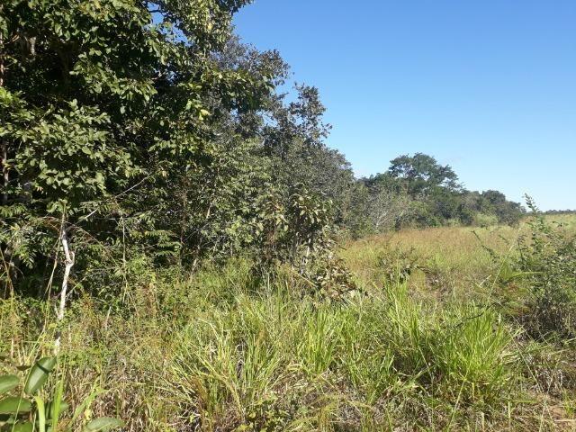 Fazenda com 784,77 hectares entre Jangada e Rosário Oeste - Foto 19