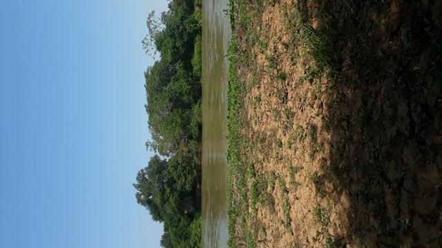 Terra no pantanal - Foto 8